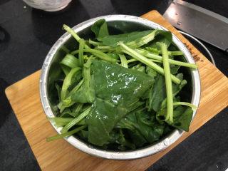 菠菜木耳炒鸡蛋➕绿槐阴里黄莺语,菠菜切段