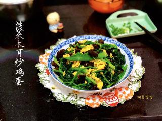 菠菜木耳炒鸡蛋➕绿槐阴里黄莺语