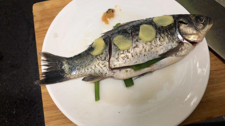凉拌鲫鱼➕鸿雁在云鱼在水,腌制十分钟