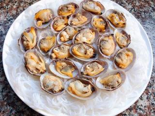 花蛤粉絲,花蛤的肉肉放入殼中再依次擺在粉絲上面