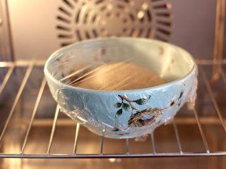 青稞蜜豆包,蓋上保鮮膜,放入蒸箱啟動發酵模式進行發酵。