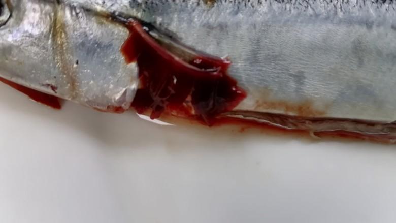红烧秋刀鱼,将鱼鳃去除然后将鱼清洗干净