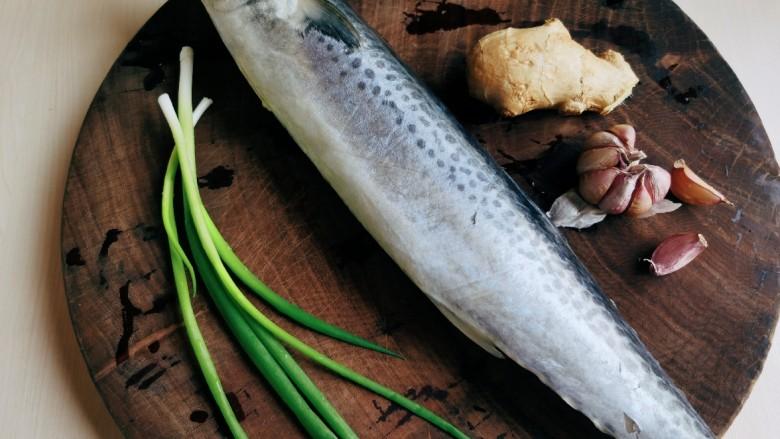 酱焖鲅鱼,准备所需食材。