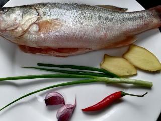 蔥油鱸魚,準備好所需材料