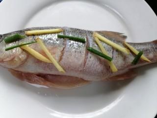 蔥油鱸魚,用鹽、黃酒、生抽、生姜、蔥將鱸魚腌制十五分鐘