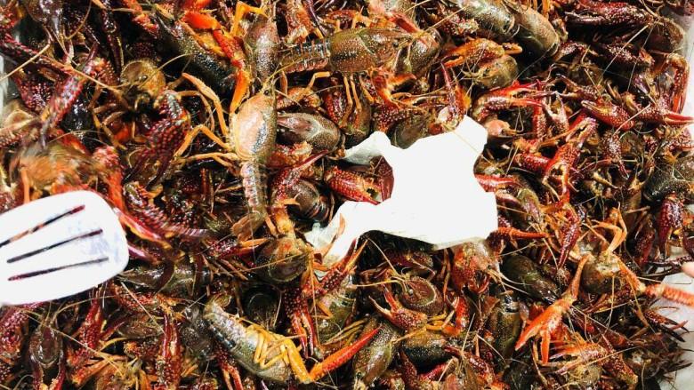 清蒸小龙虾,菜市场选取个头大的新鲜小龙虾(选用的是青头小龙虾,比红头小龙虾的肉会多一点哦)