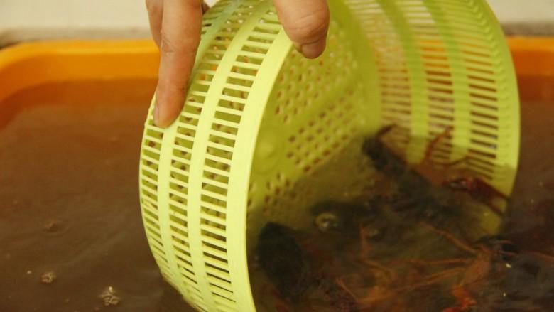 清蒸小龙虾,将小龙虾倒入一个大框內,准备一个菜篮子,水一直放着,用菜篮用捞动式翻洗至水不浑浊