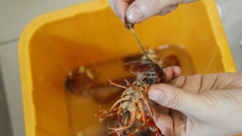 清蒸小龙虾,将小龙虾去头盖和腮,用剪刀剪掉尖尖处,去除虾线,(捏住尾巴中间那一瓣,左右摇动后轻轻一拉,整条虾线就出来了)