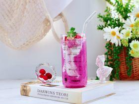 火龍果蔓越莓麥片酸奶昔