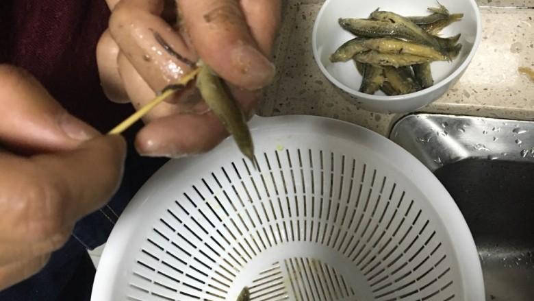 红烧泥鳅,用牙签把肚子划开,取出肠子。