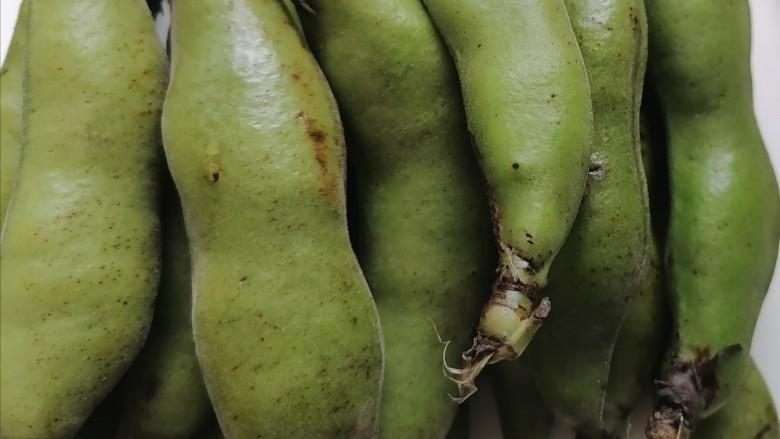 五香蚕豆,准备带壳蚕豆适量