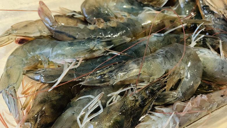 鲜虾干贝粥,准备明虾;