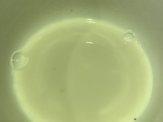 糖醋鱸魚,淀粉加點水調成淀粉水;
