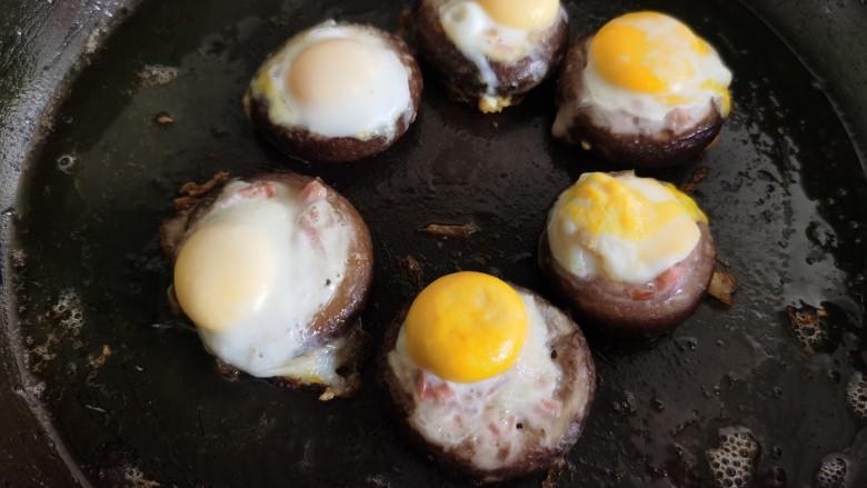 香菇鹌鹑蛋,已经凝固的鹌鹑蛋。