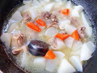 萝卜炖鸭肉,放入胡萝卜块中小火炖五分钟
