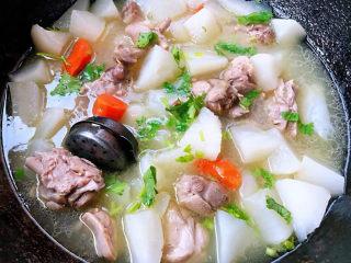 萝卜炖鸭肉,炖至鸭腿和白萝卜完全入味放入味精撒上香菜提鲜即可出锅享用