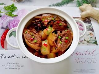萝卜炖鸭肉,拍上成品图,一道美味又营养的萝卜炖鸭肉就完成了。
