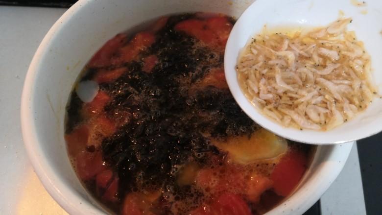 紫菜虾皮汤,倒入,料酒虾皮