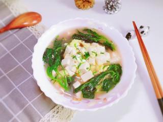 莧菜豆腐湯