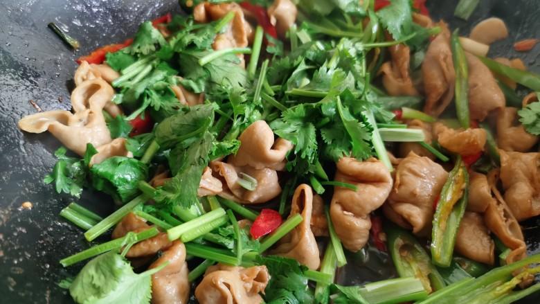 尖椒肥肠,最后加入香菜翻炒均匀。肥肠本就是熟的,也不用炒很长时间。