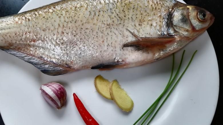 红烧鳊鱼,准备好所需材料