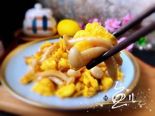 白玉菇炒雞蛋