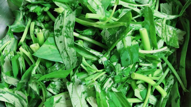 蒜蓉空心菜,将空心菜叶切段,单独放入盆中。