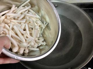 白玉菇炒鸡蛋➕春至花如锦,坐锅烧水,水开下白玉菇
