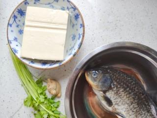 豆腐鱼头汤,首先我们准备好所有食材,很遗憾今天我没有买到鱼头,所以用了鲫鱼,但是烹饪方式和鱼头是一模一样的,营养价值也相同