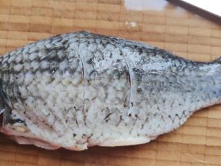 豆腐鱼头汤,鲫鱼处理干净,在鱼身两面割两刀(如果是鱼头,这一步可以省略)