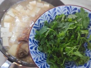 豆腐鱼头汤,加入香菜,即可