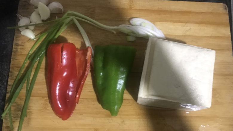 家常烧豆腐,准备好食材,豆腐,<a style='color:red;display:inline-block;' href='/shicai/ 61'>青椒</a>红椒和葱都洗干净,晚上做的菜,拍照手的影子都在上面😂😂