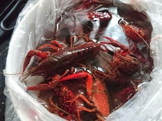 爆炒小龙虾,鲜活的小龙虾先少许盐水泡半小时