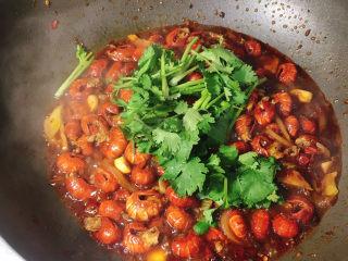 麻辣小龙虾尾拌面,大火烧开,中火焖几分钟,如果汤汁太多的话,可以大火收汁,最后下香菜,翻拌均匀即可。