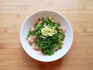 千张包肉,准备好肉馅,将切好的葱叶碎和姜末放在肉馅上。