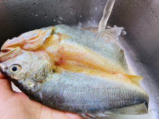 葱油黄鱼,黄鱼去鳞去内脏清洗干净