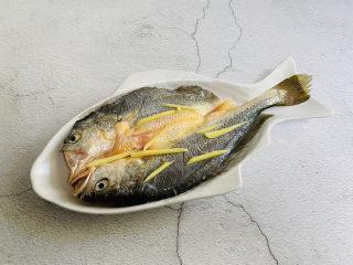 葱油黄鱼,将黄鱼码入盘中
