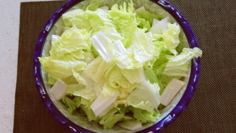 白菜炖豆腐,切块