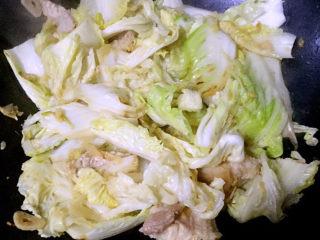 白菜炖豆腐,白菜片炒出水份
