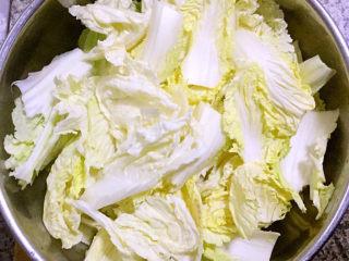 白菜炖豆腐,白菜片成薄一点的片状