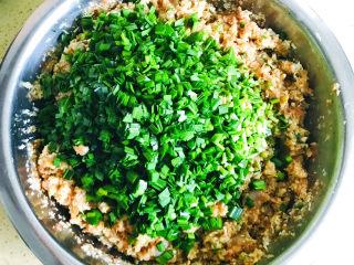 白菜虾仁韭菜猪肉饺子,韭菜买回来,清洗干净,切碎,加入肉馅中,搅拌均匀