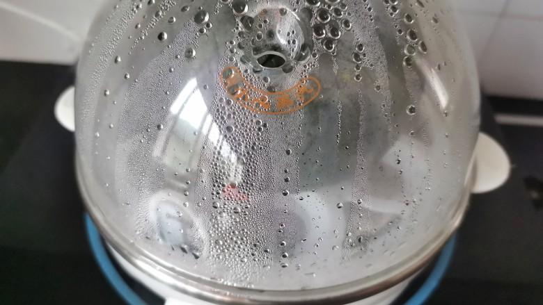 南瓜布丁,蒸蛋器加满水,蒸10分钟