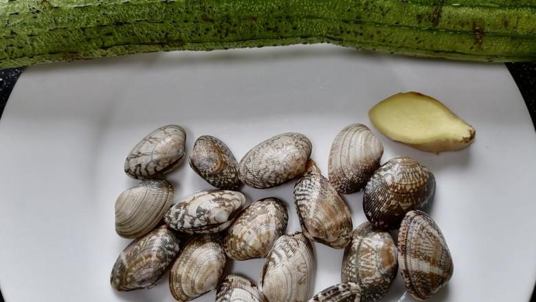 丝瓜花蛤汤,准备好所需材料