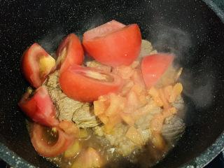 番茄牛腩煲,加入大块番茄