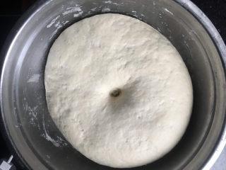 香肠馒头卷,从冰箱里取出发酵好的面团先回一下温