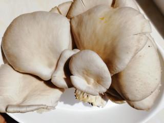 平菇豆腐汤,鲜平菇150g