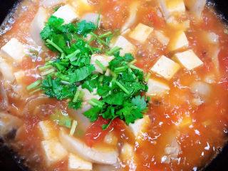 平菇豆腐汤,撒上香菜末。