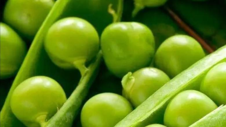 肉末炒豌豆,新鲜豌豆荚
