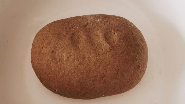 荞麦馒头,再揉成面团 加盖子发酵