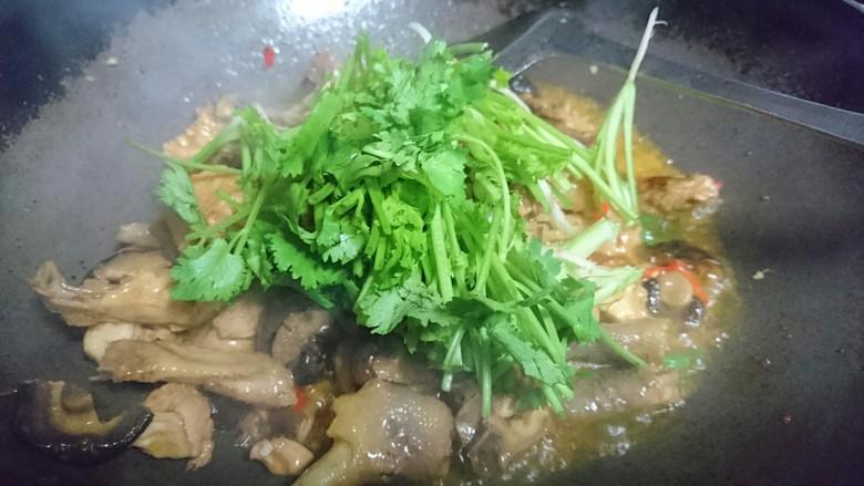 香菇焖鸡,最后出锅前拌入香菜即可